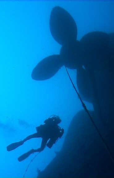 diver swims at 120m towards HMS Victoria